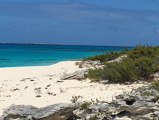 Salt Cay : photo0.jpg