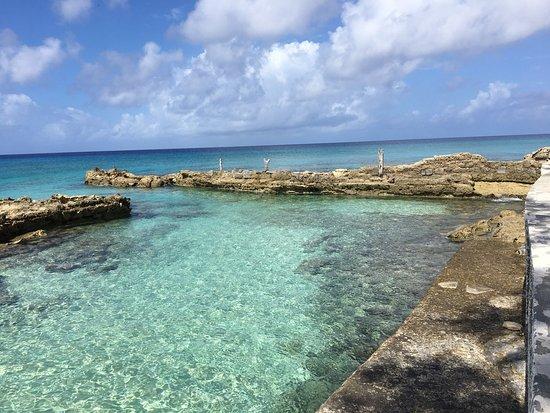 Salt Cay : photo2.jpg