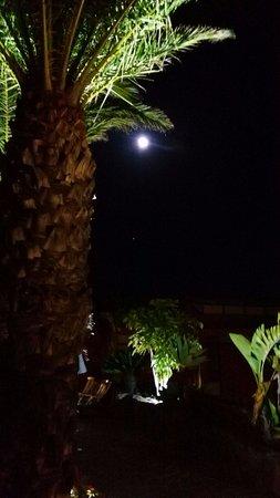 Hotel Rural Las Tirajanas: Zona jardín, piscina climatizada. Excelente