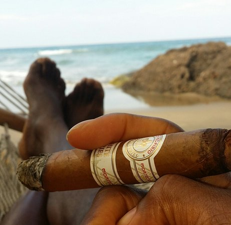 Cocles, Costa Rica: Enjoying my Monticristo cigar while laying in the the beach hamock