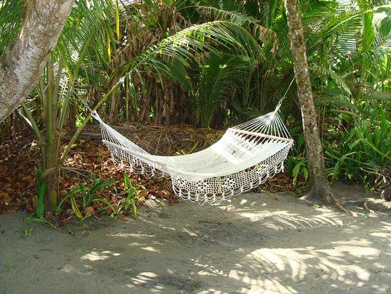 Cocles, Costa Rica: Beach hamock