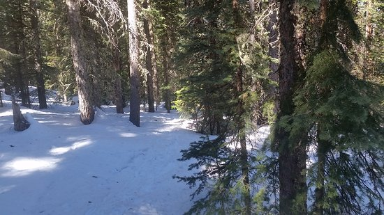 Telluride, Colorado: 20170316_111457_large.jpg