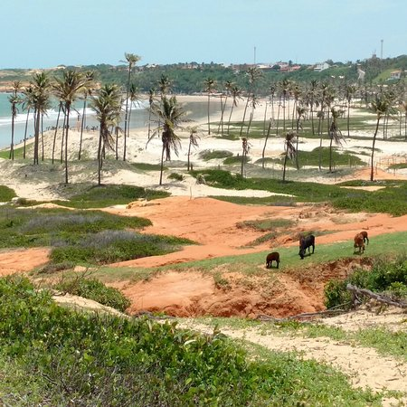 Praia da Lagoinha : IMG_20170315_153455_540_large.jpg