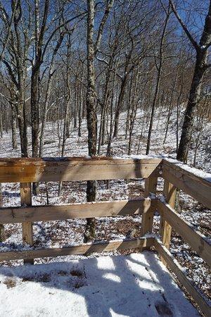 แจสเปอร์, จอร์เจีย: Snow on the hillside and deck.