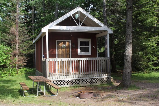 Kingston, Canada: Cindy Bear Comfy Cabin
