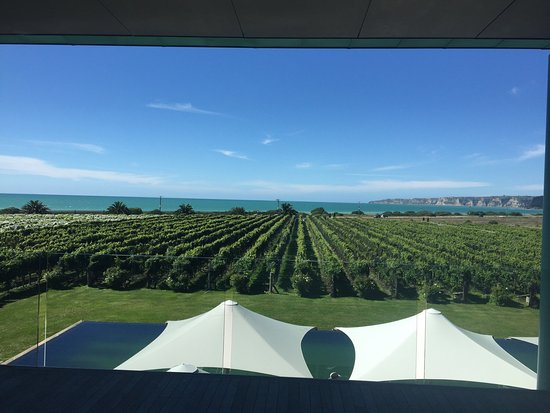 Te Awanga, Новая Зеландия: Elephant Hill Estate Winery