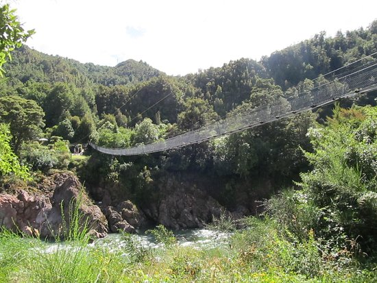 Nelson-Tasman Region Picture