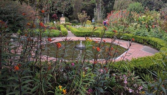 Jardín Botánico de Bogotá Jose Celestino Mutis: Jardín botánico