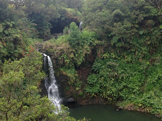Kukuihaele, هاواي: small waterfall oasis 1