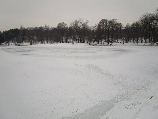 Carol Park (Liberty Park): Lago ghiacciato all'interno di Carol Park