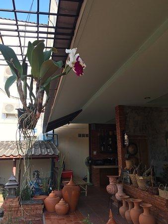Palm Sweet Hotel : photo0.jpg
