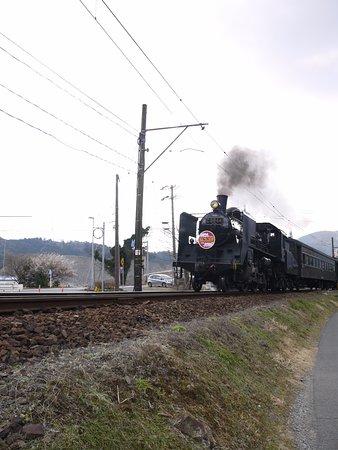 Shizuoka Prefecture, Japan: 沿線で見る機関車