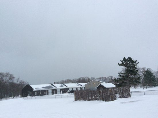 Youngstown, NY: Beauty in the snow