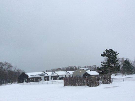 Youngstown, Estado de Nueva York: Beauty in the snow