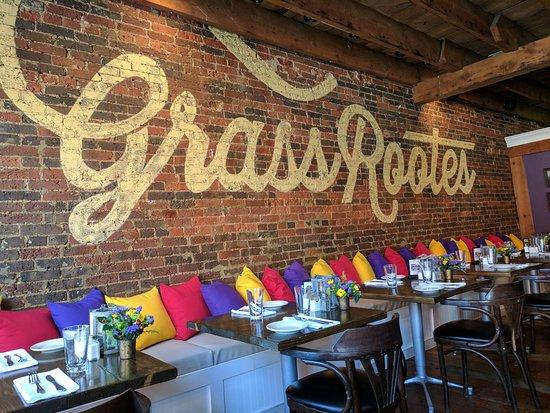 Culpeper, VA: Grass Rootes
