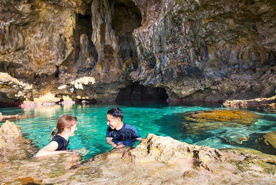 Swimming With Whales Picture Of Niue South Pacific
