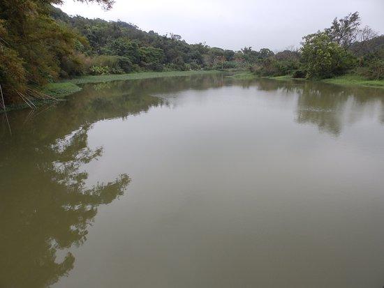 Hsinchu, Taiwan: Green Grass Lake