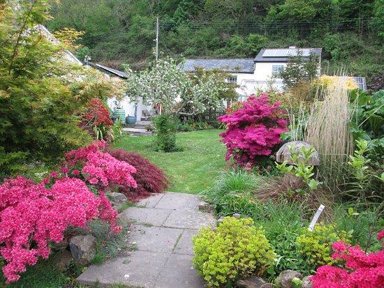 Par, UK: Garden in the springtime