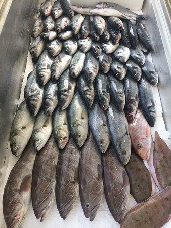 Deniz Suyu Balik Restaurant