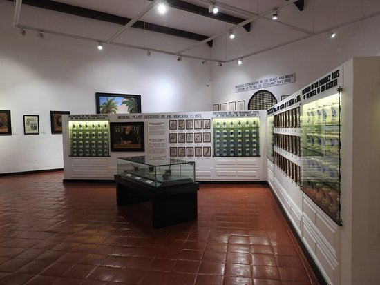 Museo San Agustín: Botanist studies by monks including medical research