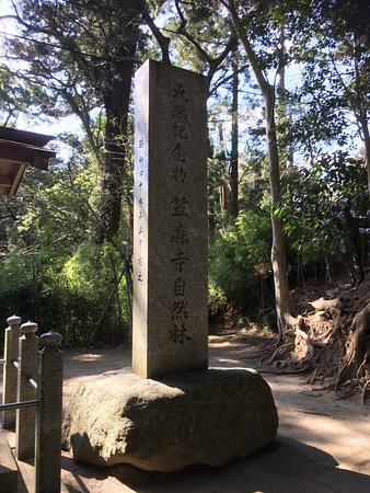 Chonan-machi, Japan: photo4.jpg
