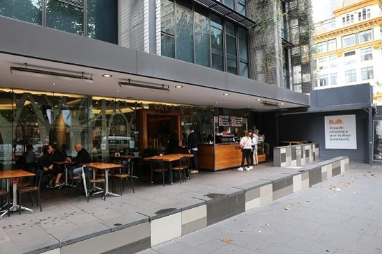 The Canopy The Canopy & The Canopy - Picture of The Canopy Sydney - TripAdvisor