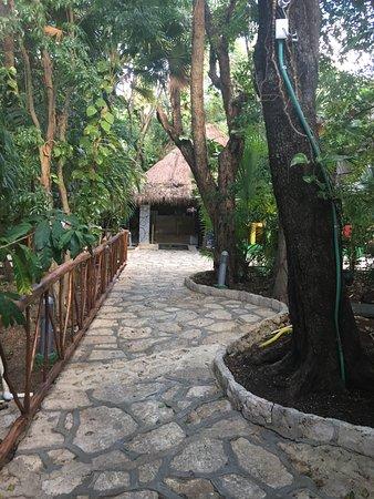 Hotel El Tukan: photo3.jpg