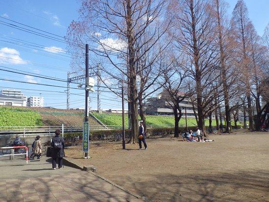 Yamato Park