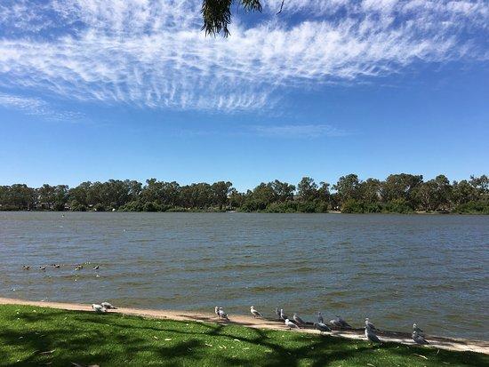 Mannum, Australia: photo5.jpg