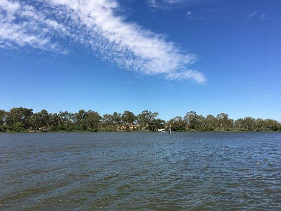 Mannum, Australia: photo6.jpg