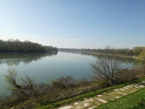 Casalmaggiore, Italien: IMG-20170314-WA0010_large.jpg
