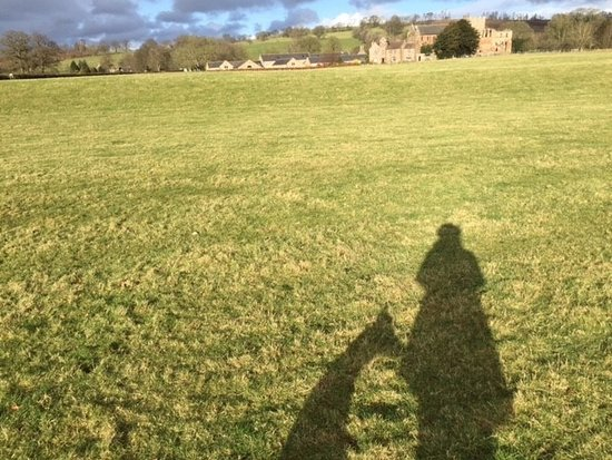 Walking the dog in the field by Lanercost Bed and Breakfast