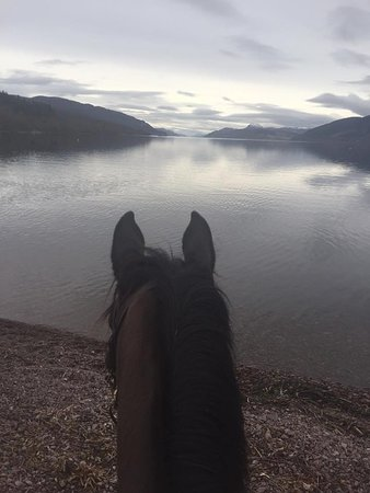 Dores, UK: Between the Ears at Loch Ness