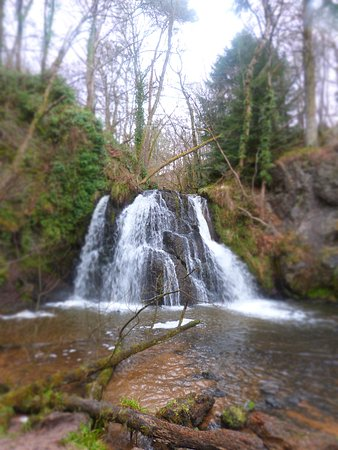 Part of the Fairy Glen walk Rosemarkie