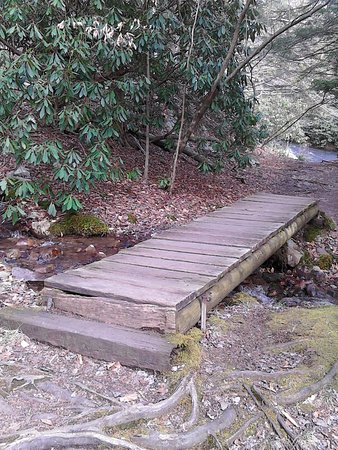 Hickory Run State Park : Nice scenic walking trails.......