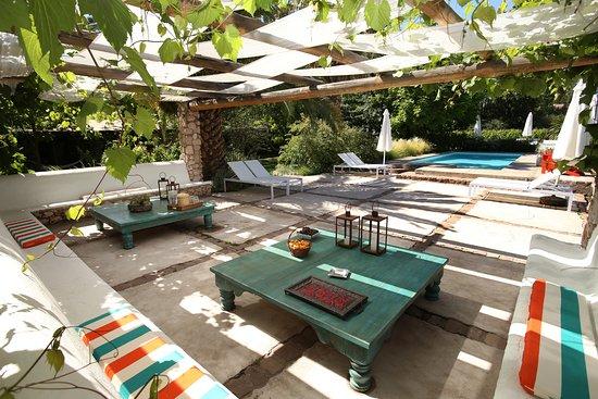 Finca Adalgisa Wine Hotel, Vineyard & Winery: Outdoor Pool close by the vineyard