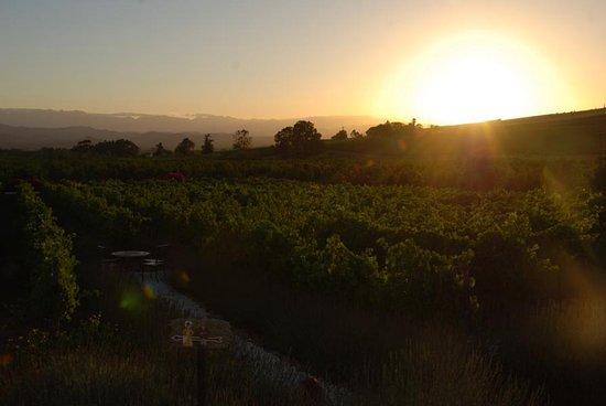 Robertson, South Africa: Sonnenuntergang