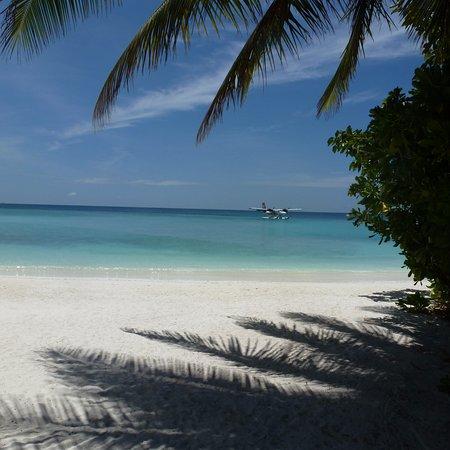 Veligandu Island Resort & Spa Photo