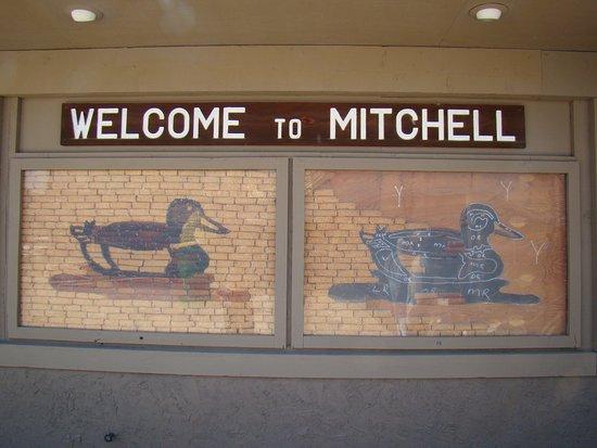 มิตเซลล์, เซาท์ดาโคตา: Mitchell, SD