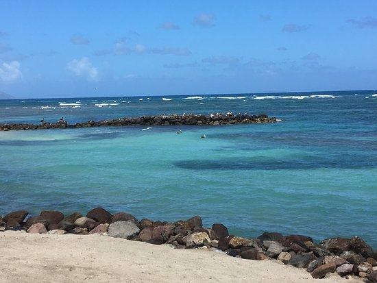Nisbet Plantation Beach Club: photo2.jpg
