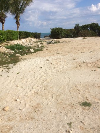 Turtle Cove, Providenciales: Path to the beach