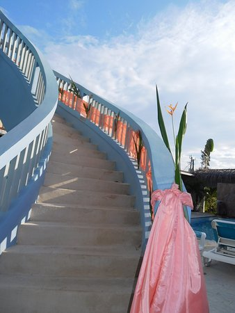 Parrot Cove Lodge Foto
