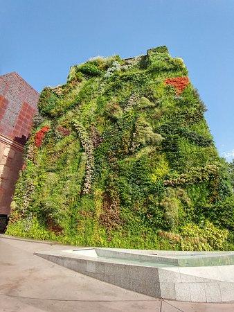 Jardin Verticale jardín vertical - picture of caixa forum, madrid - tripadvisor
