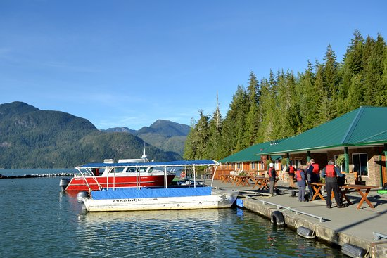 Glendale Cove, Kanada: Knight Inlet Lodge