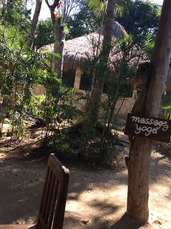Organic Yoga Mexico: One of the huts