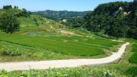 Shikamura Rice Terraces