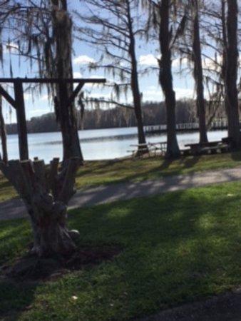 Florala, AL: Lake Jackson