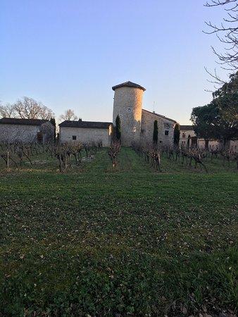 Cahuzac-sur-Vere, Francia: photo9.jpg
