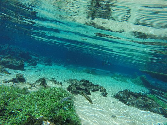 Recanto Ecológico Rio da Prata: Água cristalina...
