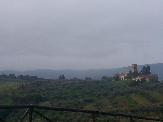 Carmignano, Ιταλία: Villa Medicea di Artimino